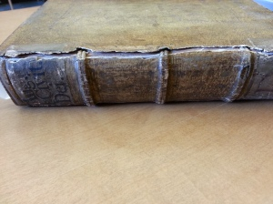 A rare book displayed spine out; the spine has thick bumps that resemble vertebrae.