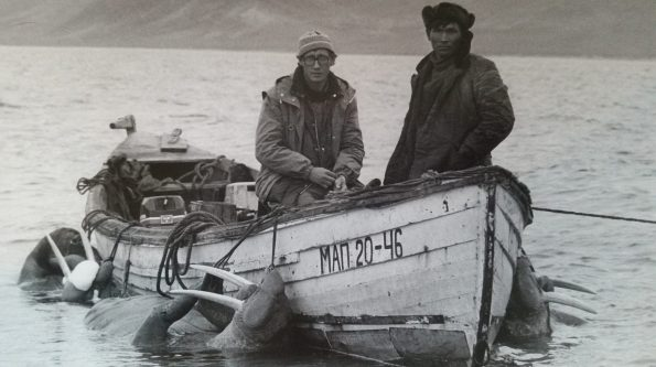 Two men in a small motorboat with three walruses tied to the sides and floating in the water.
